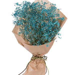파란그리움(예약상품)
